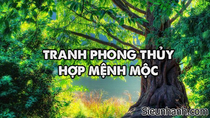 lua-chon-tranh-phong-thuy-cho-nguoi-menh-moc-phu-hop-nhat-1